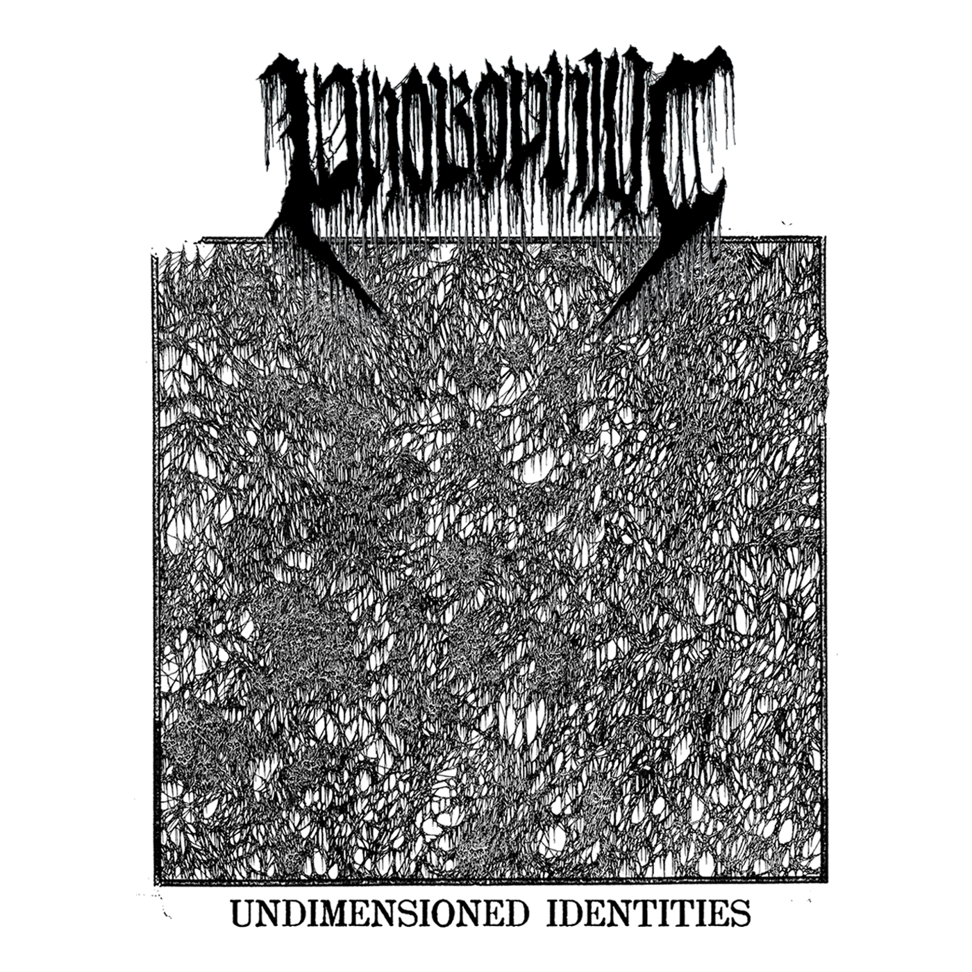 "Album Art for ""Undimensioned Identities"" by Phobophilic"